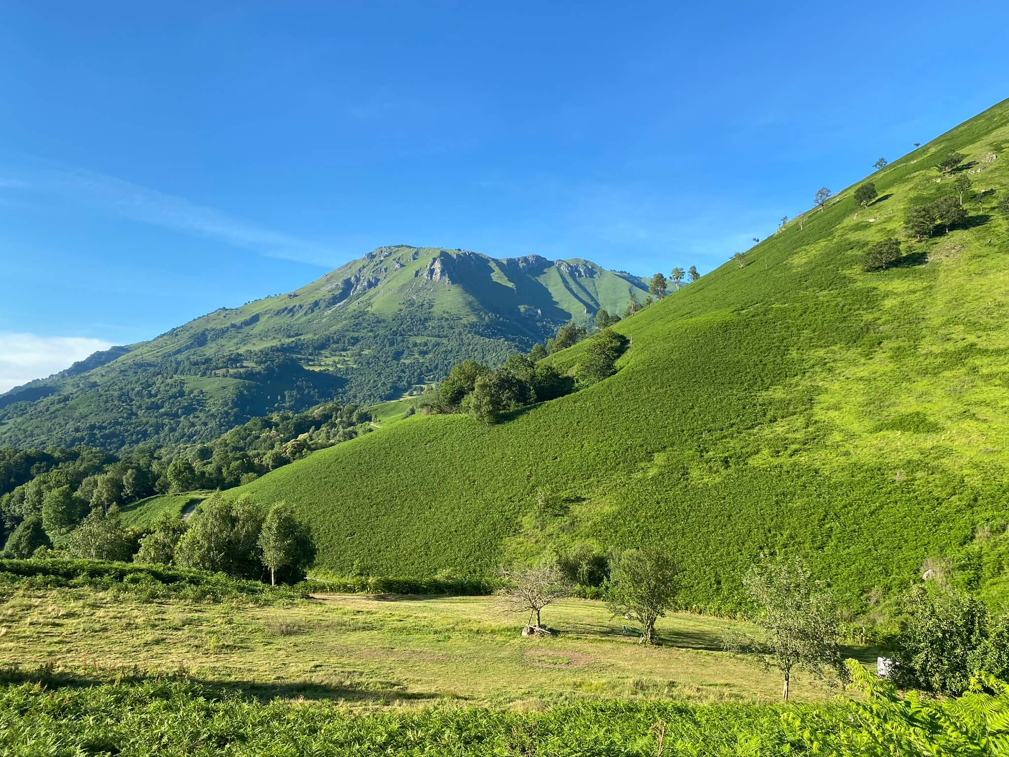 On ne se lasse pas d'admirer le paysage verdoyant. En arrière plan, toujours l'Ourdinse
