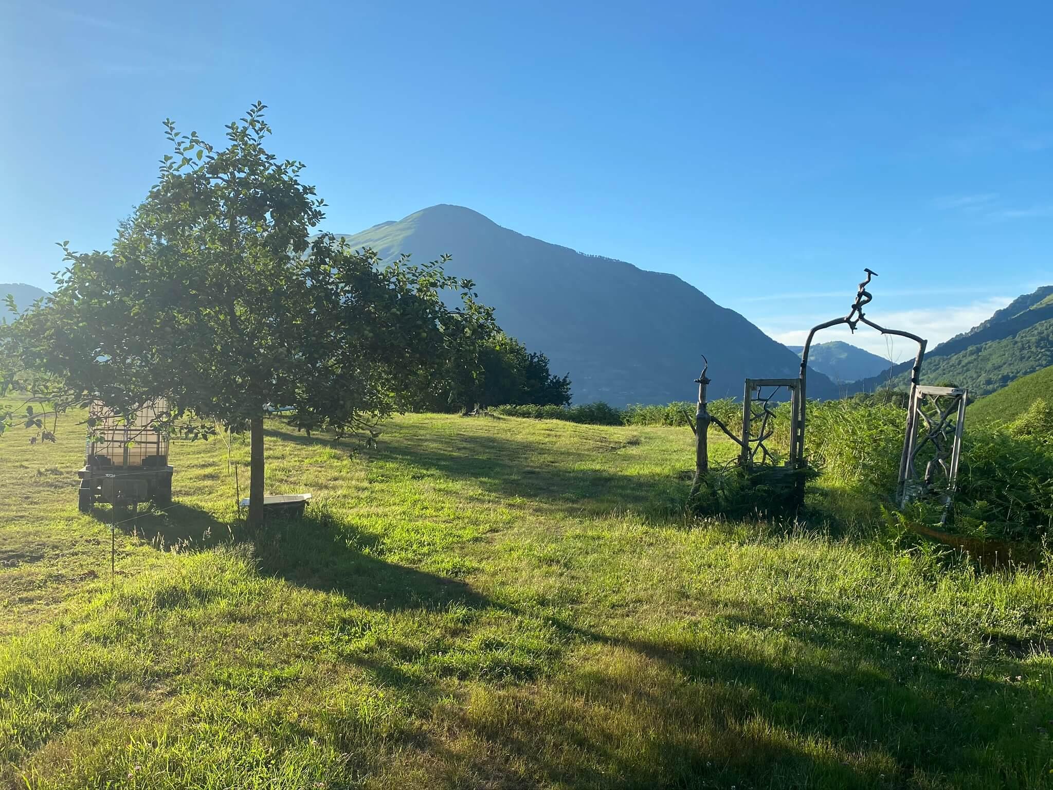 La montagne en arrière plan, c'est le Layens (1625 m)