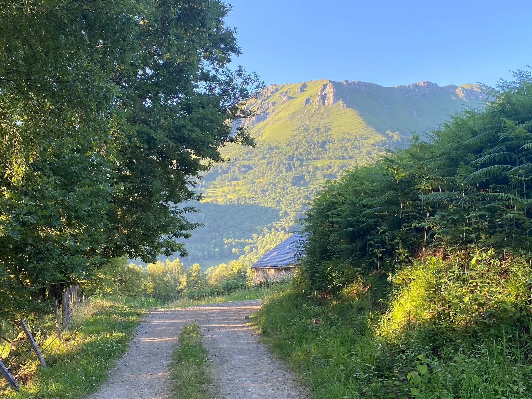 Toujours la montagne de l'Ourdinse en ligne de mire
