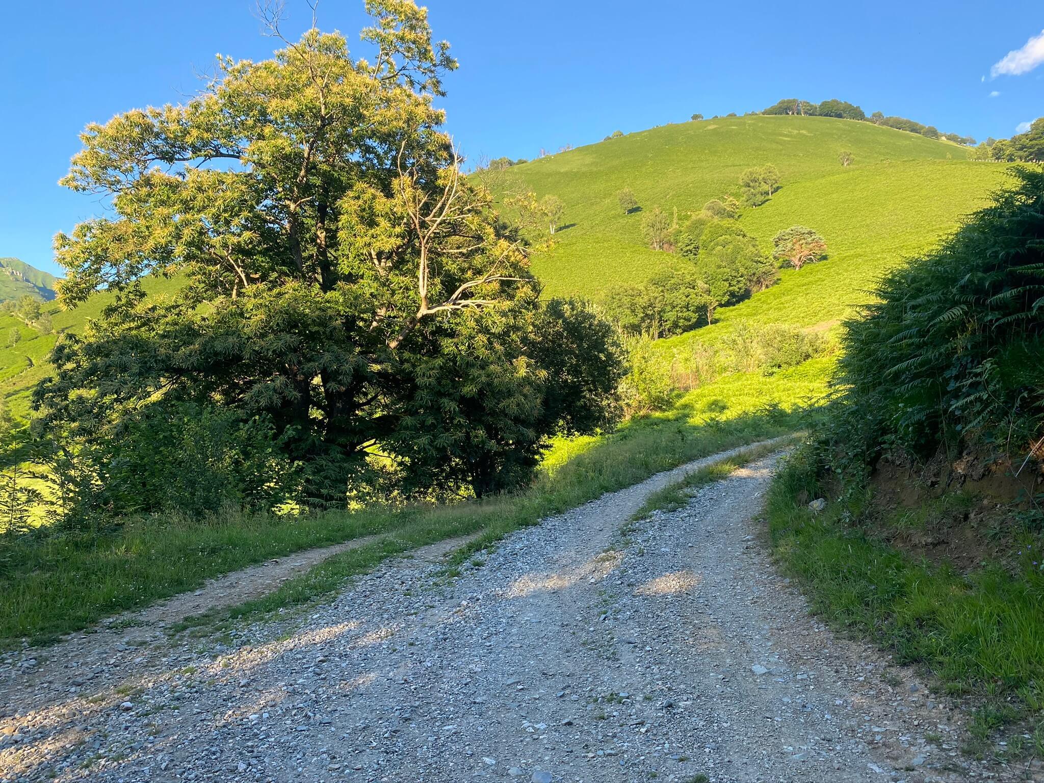 À droite, la piste vous emmène au col de Bergout, d'où décollent les parapentistes